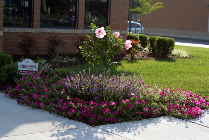 Business Landscaping