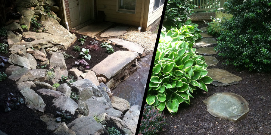 Side Yard Renovation